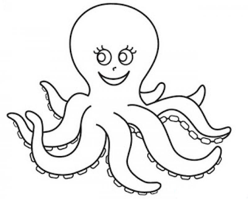 octopus coloring page free animals octopus printable coloring pages for octopus page coloring