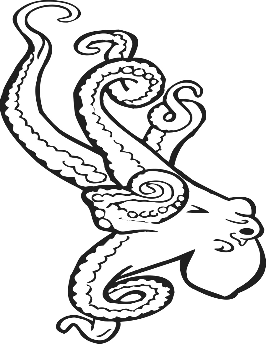 octopus coloring picture clipart panda free clipart images octopus coloring picture