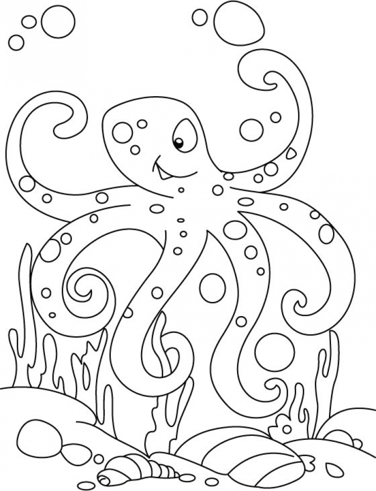 octopus coloring picture free printable octopus coloring pages for kids animal place picture octopus coloring 1 1