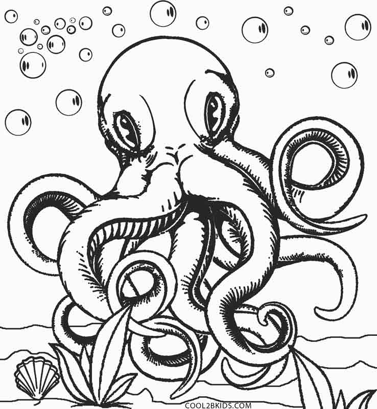 octopus coloring picture octopus coloring pages preschool and kindergarten octopus picture coloring