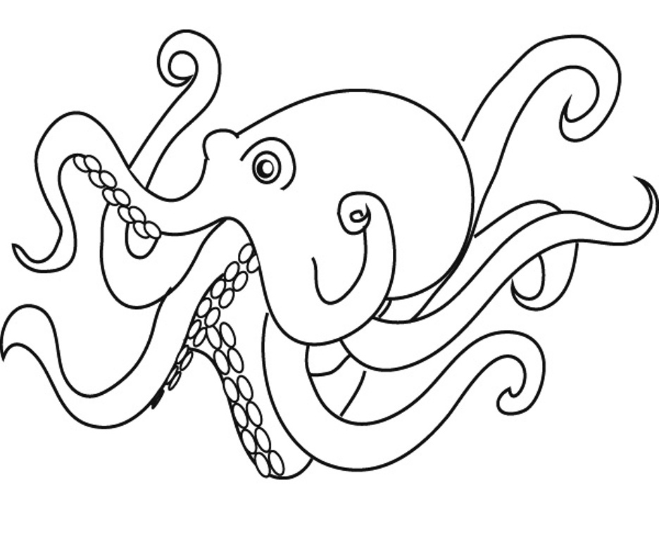 octopus pictures for coloring free printable octopus coloring pages for kids for pictures coloring octopus