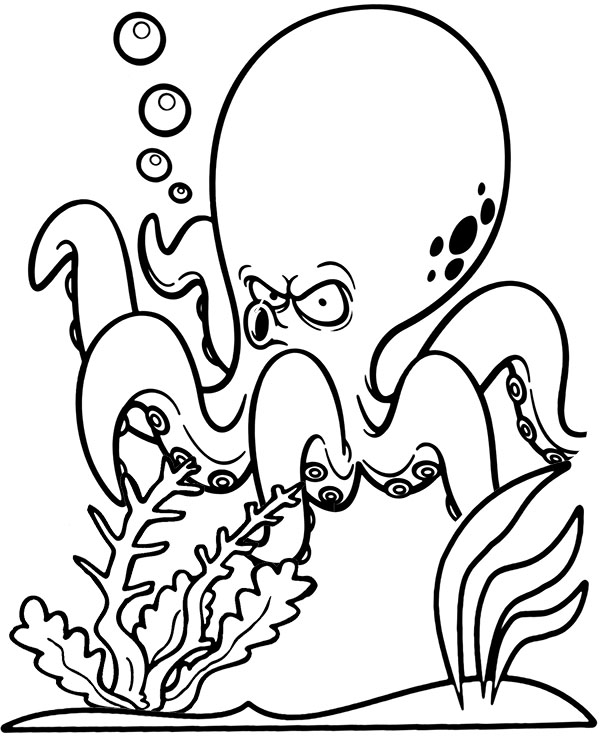 octopus pictures for coloring get this printable octopus coloring pages yzost coloring pictures octopus for