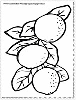 orange tree coloring page the tree is brown and orange coloring page twisty noodle orange page tree coloring