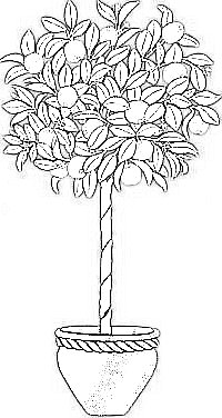 orange tree coloring page tree coloring pages coloring pages to download and print coloring tree orange page