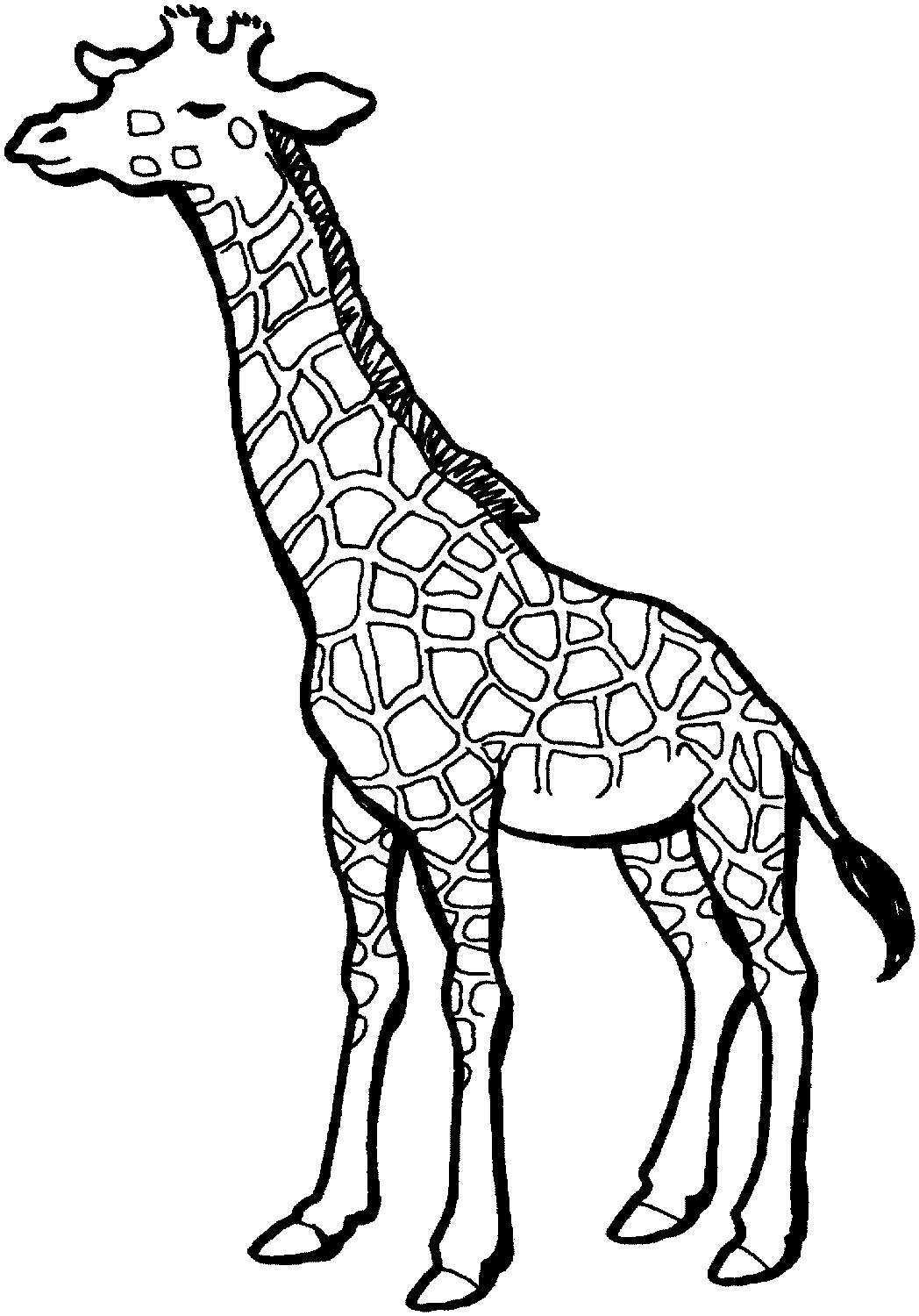 outline for coloring pencil coloring pages getcoloringpagescom outline coloring for