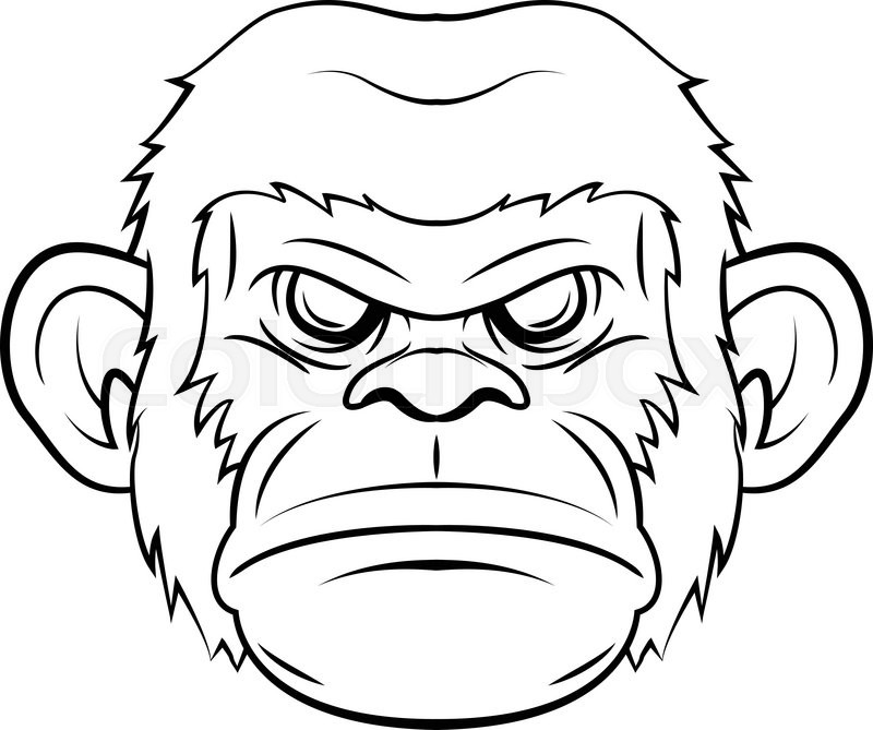outline of a gorilla gorilla symbol illustration stock vector colourbox of a outline gorilla