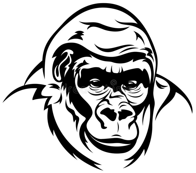 outline of a gorilla gorilla vector stock vector image of power outline gorilla of a outline