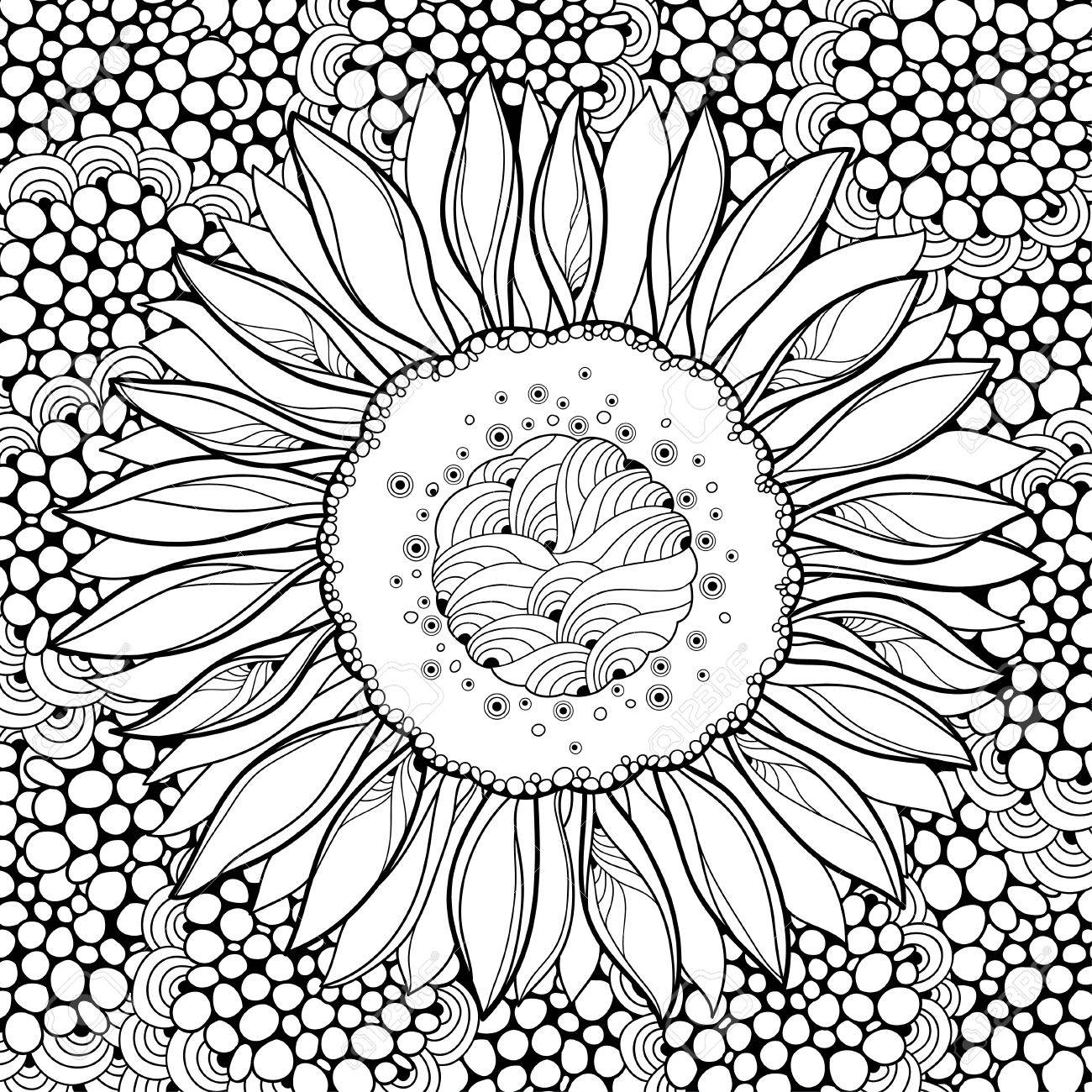 outline of a sunflower black and white sunflower drawing free download on of sunflower outline a