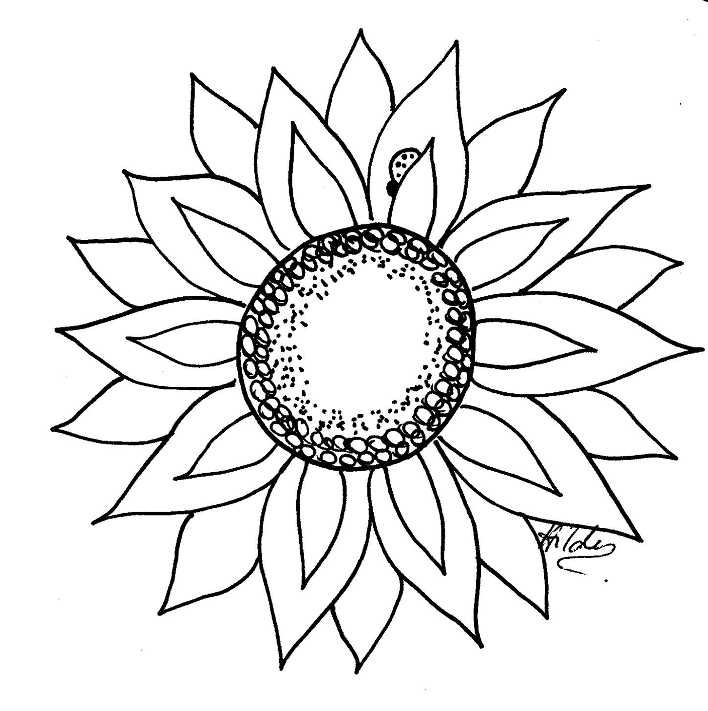 Outline of a sunflower