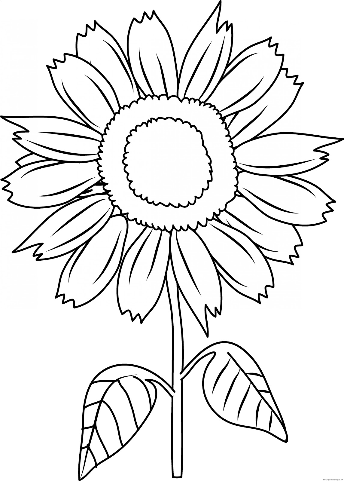 outline of a sunflower outline products archives colors for earth llc of a sunflower outline