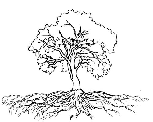 outline of a tree clipart tree tree with branches outline free of tree outline a