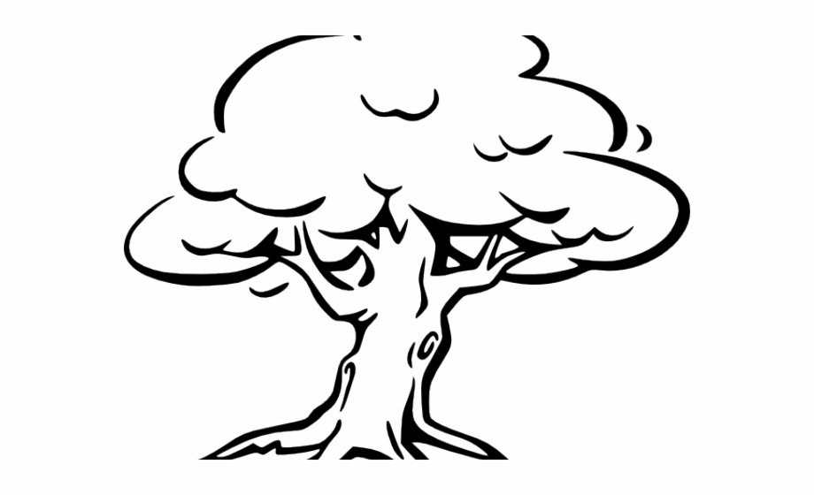 outline of a tree clipart trees outline clipart trees outline transparent tree a of outline