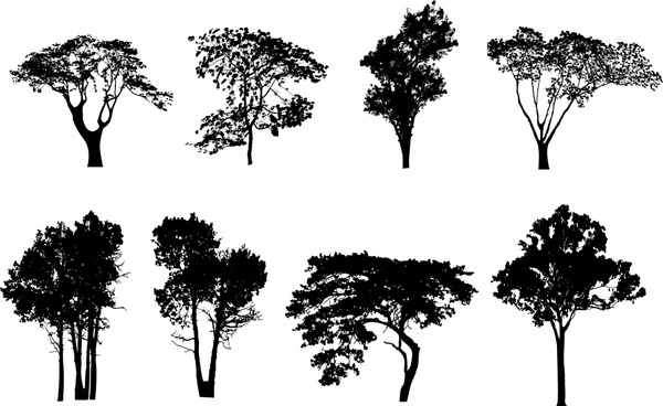 outline of a tree graveyard tree outline clipart clipground a tree of outline