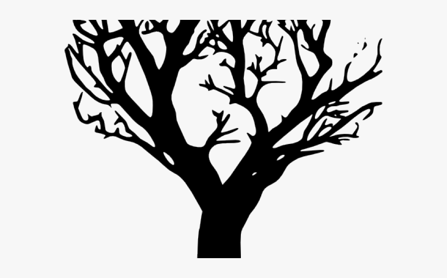 outline of a tree outline drawing of tree free transparent clipart tree a outline of