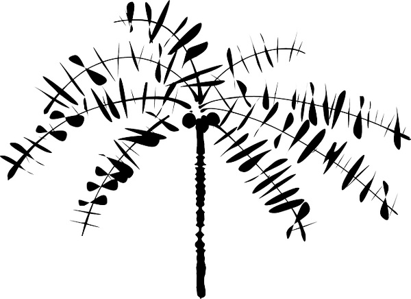 outline of a tree tree drawing outline at getdrawings free download of outline a tree