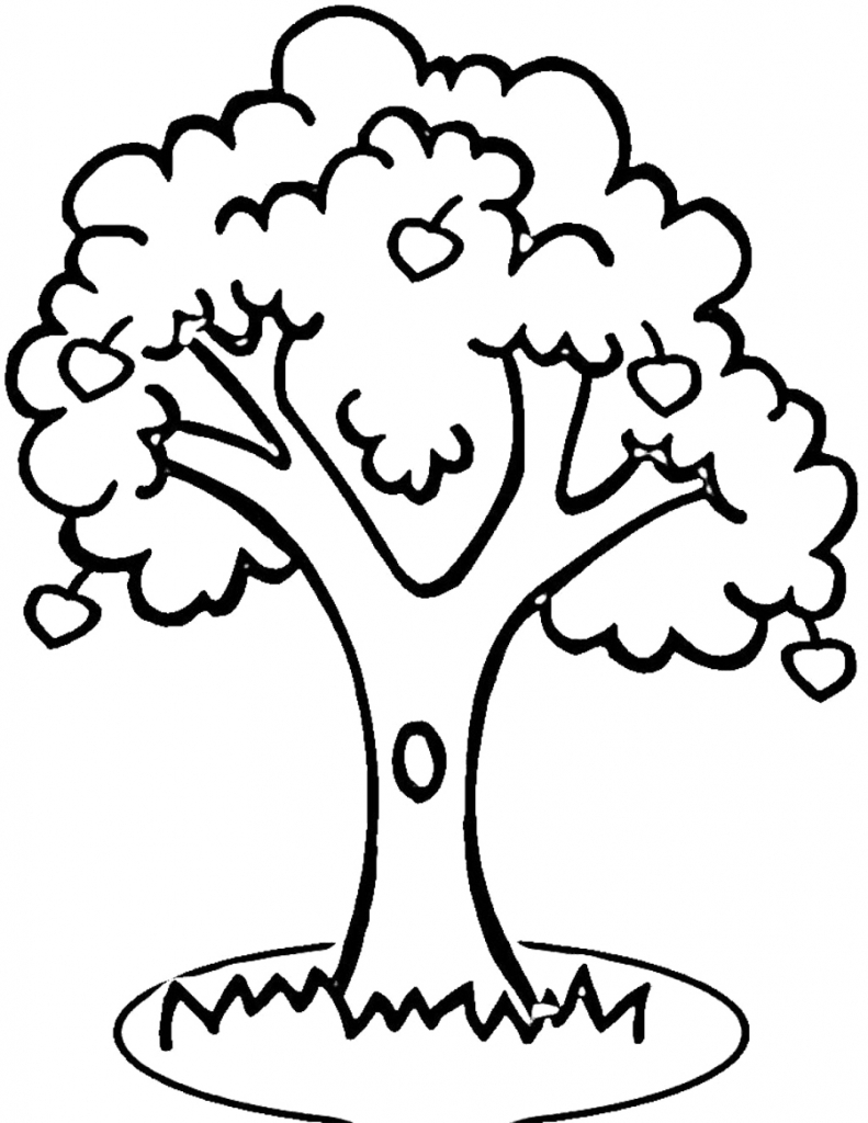 Outline of a tree