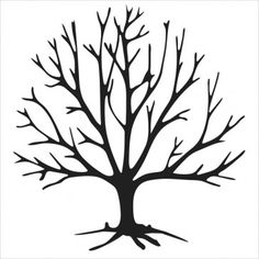 outline of a tree tree outline vector at getdrawings free download tree of a outline