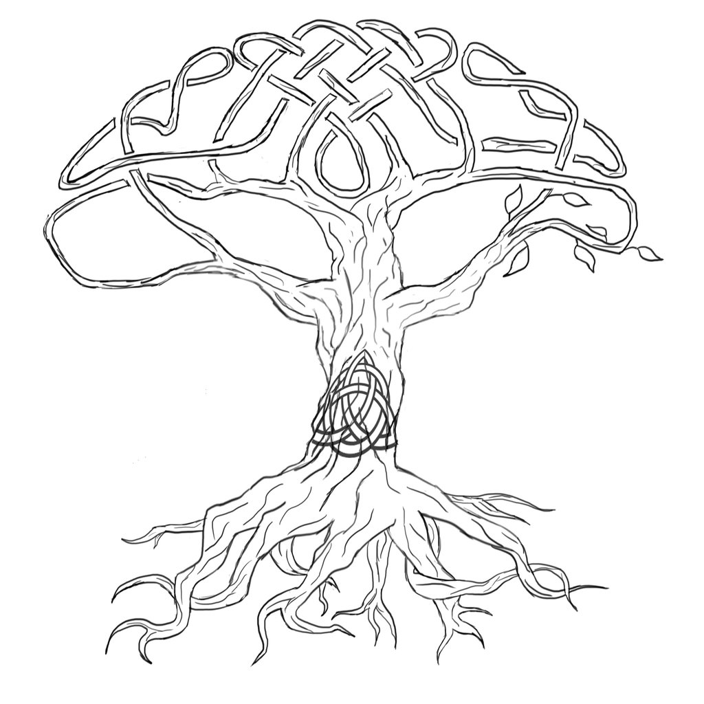outline of a tree tree pattern christmas tree coloring page christmas a outline of tree