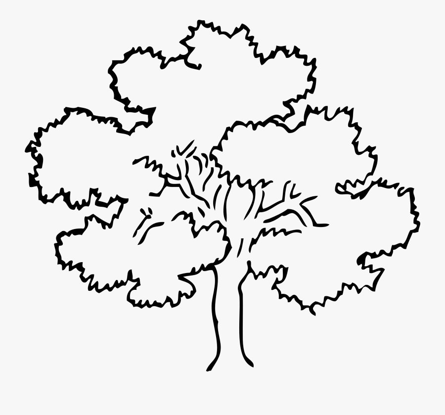 outline of a tree tree trunk clipart outline 20 free cliparts download outline a of tree