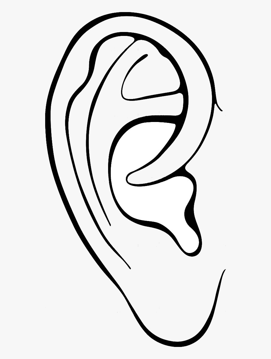 outline picture of ear ear outline vectors photos and psd files free download ear of outline picture