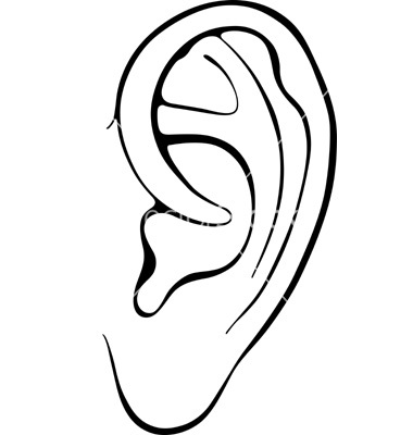 outline picture of ear ear outlines clip art outline ear of picture