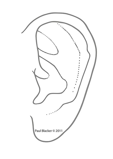 outline picture of ear listening ears template clipart panda free clipart images outline ear picture of