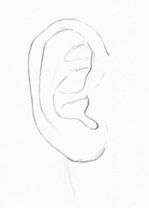 outline picture of ear siowfa13 science in our world certainty and controversy ear outline picture of