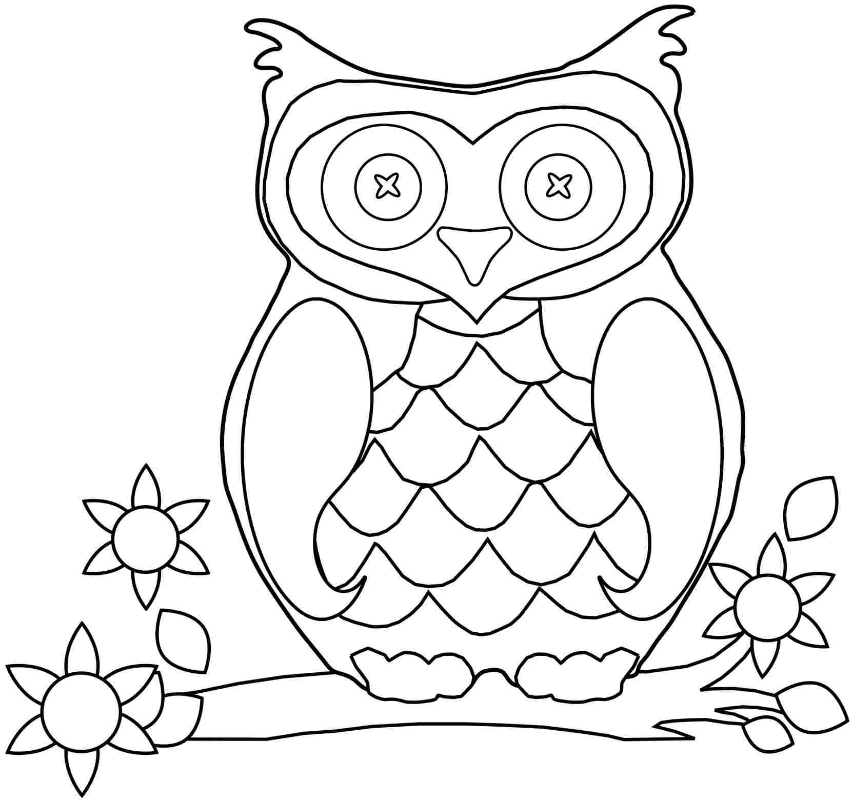 owl colouring pictures owl coloring pages kidsuki pictures colouring owl
