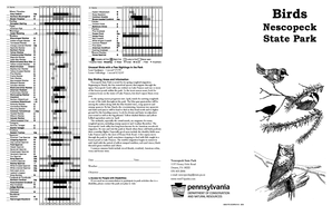 pa state bird fillable online dcnr state pa birds of nescopeck state state bird pa