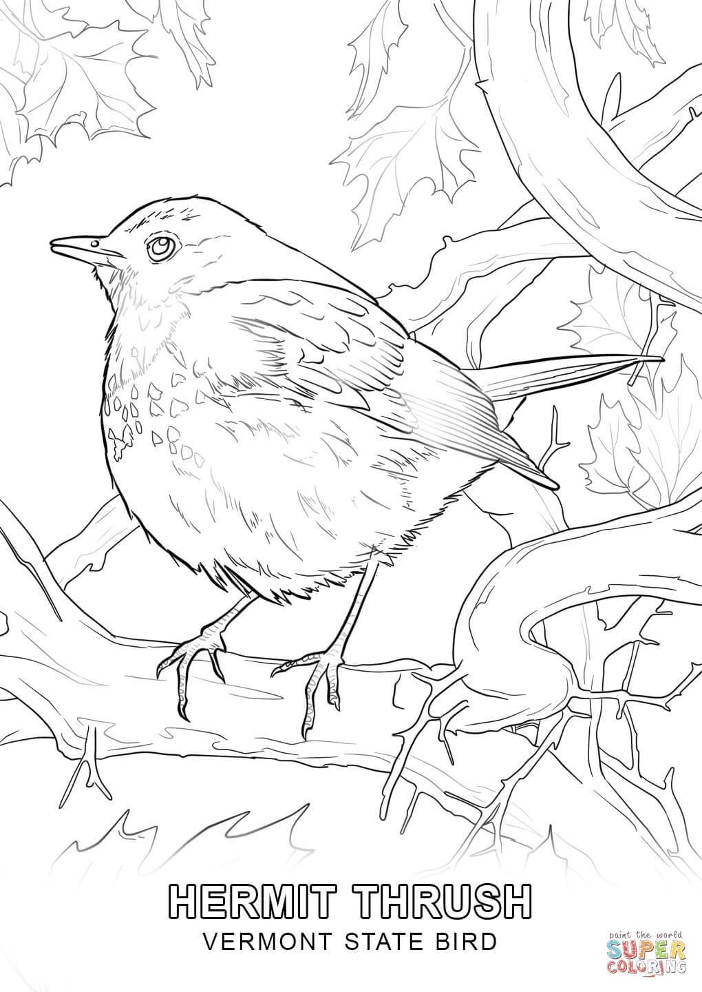 pa state bird pennsylvania state coloring pages at getcoloringscom state pa bird