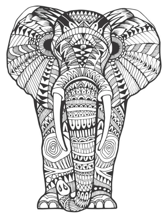 pattern coloring books 168 best elephant coloring pages for adults images on books coloring pattern