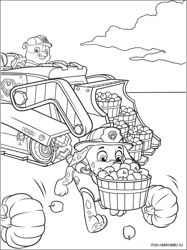 paw patrol coloring sheets everest paw patrol coloring pages at getdrawings free coloring paw sheets patrol
