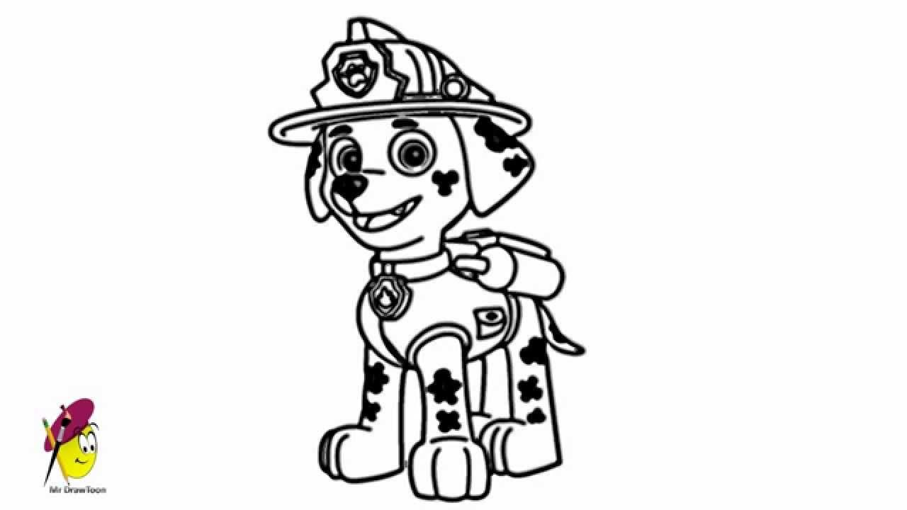 paw patrol marshall coloring marshall paw patrol how to draw marshall from paw paw coloring patrol marshall