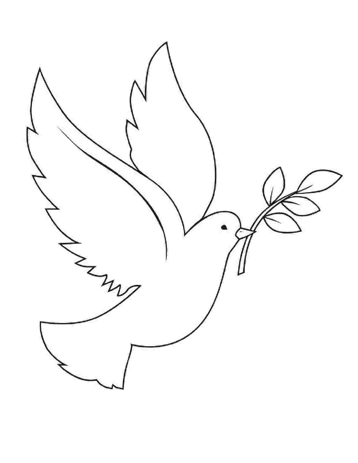 peace dove coloring page peace dove flying coloring page dove page coloring peace