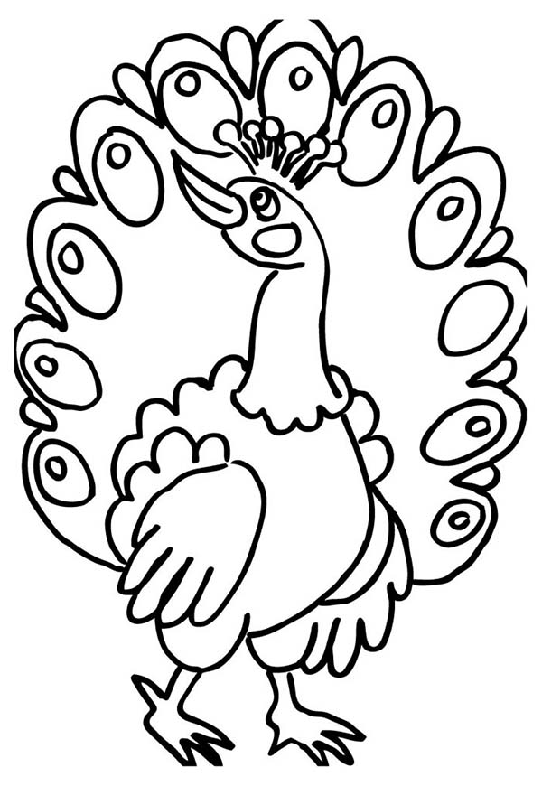 peacock coloring a female peacock fan out her tail feather coloring page peacock coloring