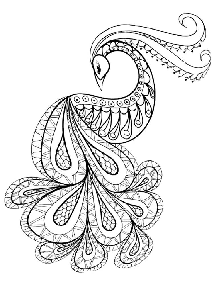 peacock coloring free peacock coloring pages for adults printable to peacock coloring