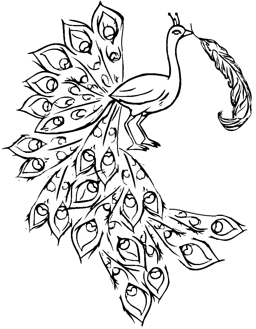 peacock coloring simple drawing of green peacock coloring page kids play peacock coloring