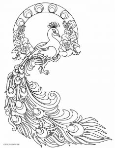 peacock pictures for colouring printable peacock coloring pages for kids cool2bkids colouring pictures peacock for