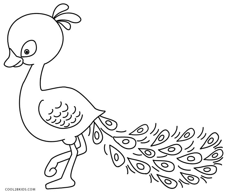 peacock pictures for colouring printable peacock coloring pages for kids cool2bkids pictures for peacock colouring