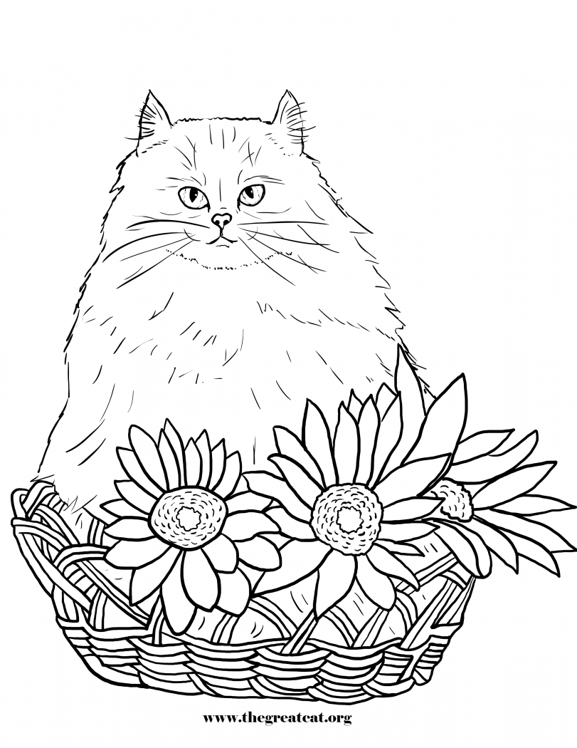 persian cat coloring pages 30 free printable cat coloring pages cat coloring persian pages