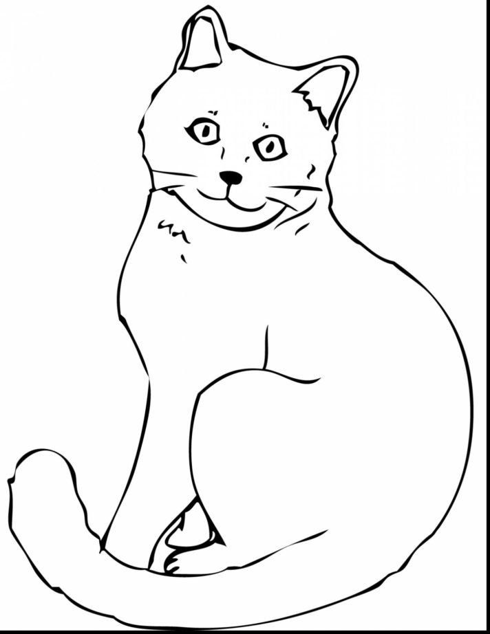 persian cat coloring pages colored page female persian cat painted by dsjsjsud986 coloring cat persian pages