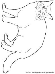 persian cat coloring pages persian cat coloring pages at getdrawings free download cat coloring pages persian