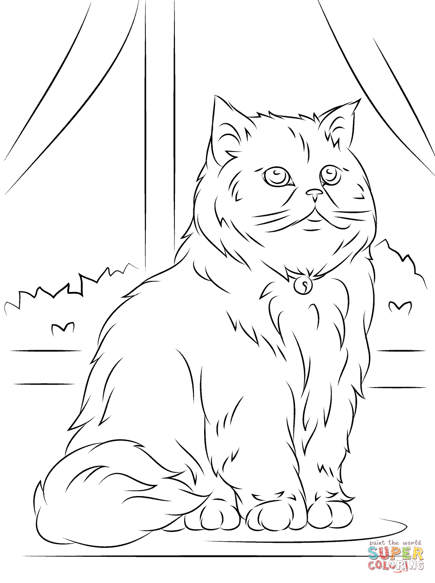 persian cat coloring pages persian cat is sleeping coloring page persian cat is coloring persian cat pages