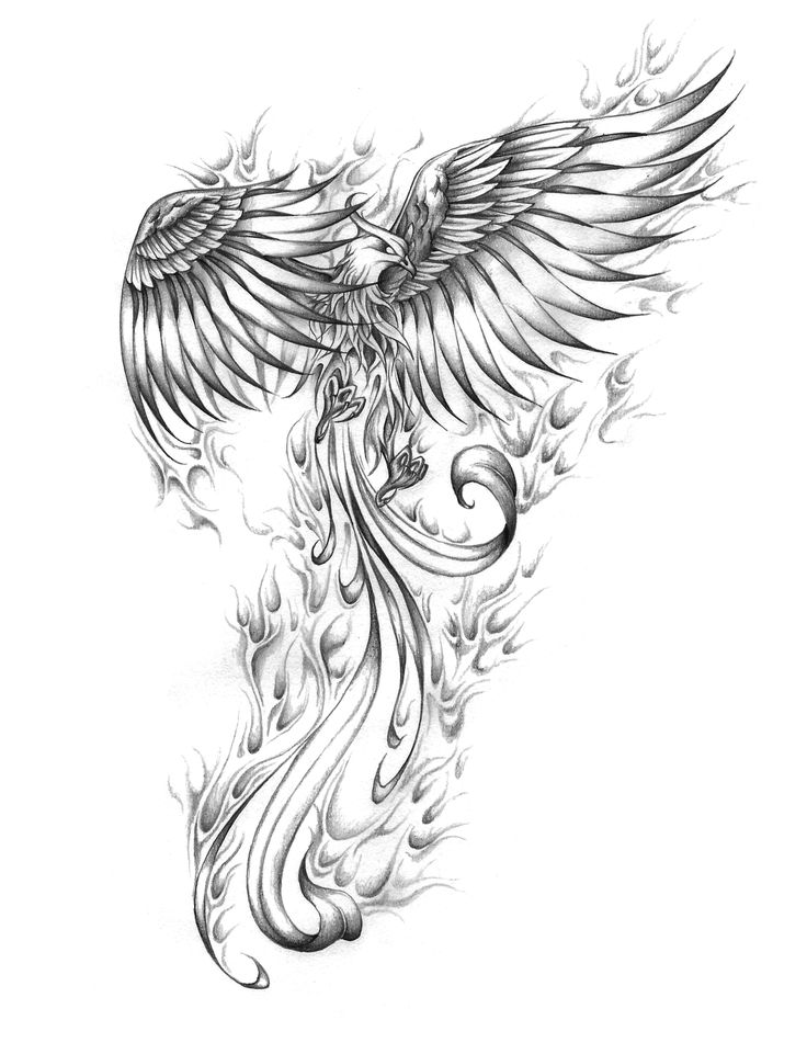phoenix coloring pages fawkes the phoenix coloring pages coloring pages phoenix coloring pages
