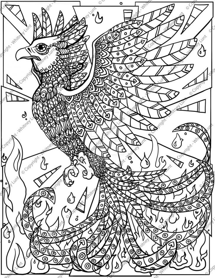 phoenix coloring pages wonderful picture of phoenix coloring page pictures of pages phoenix coloring