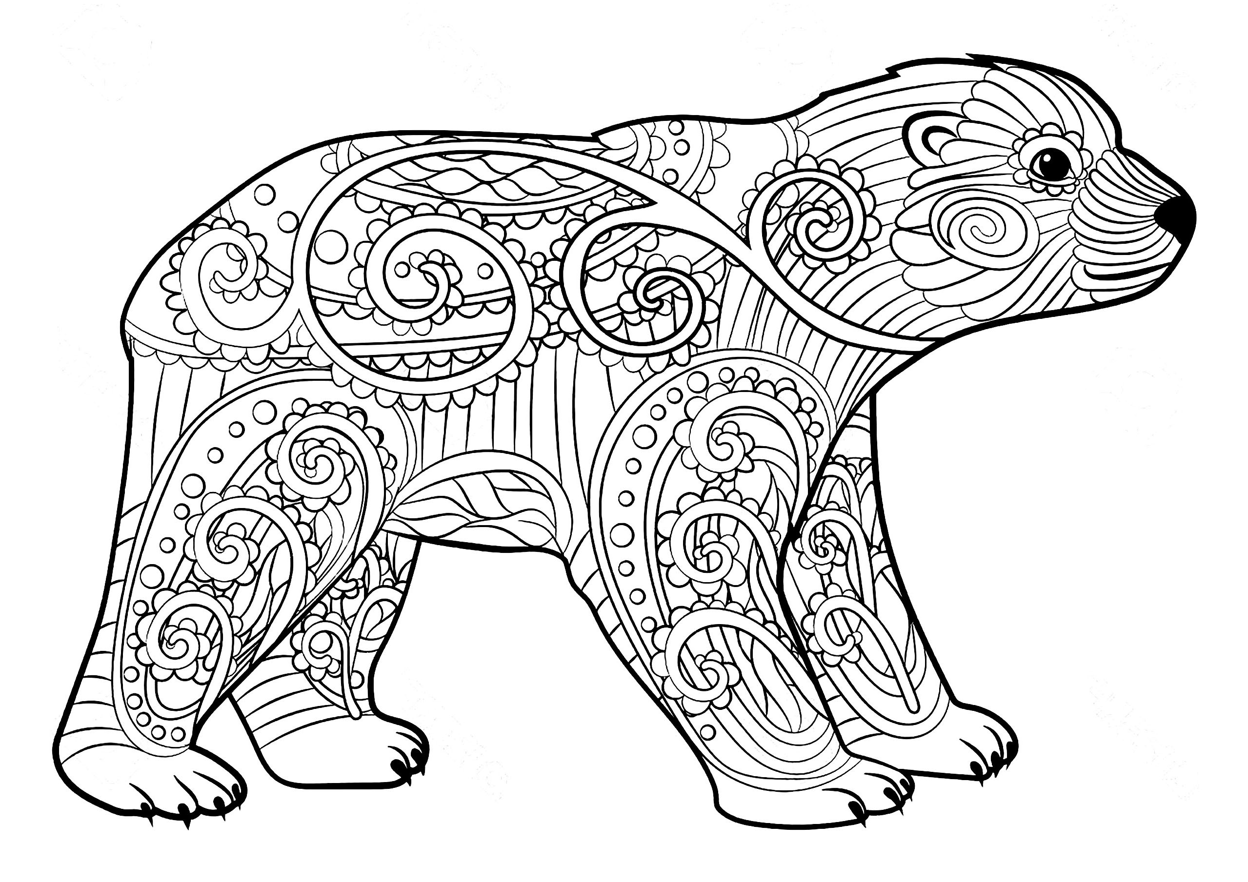 pics to colour bears to color for kids bears kids coloring pages colour to pics