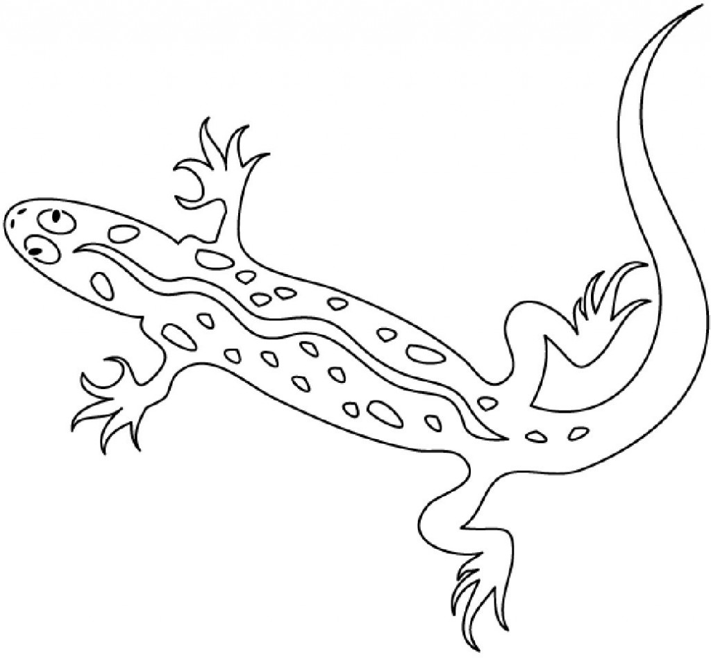 picture of a lizard to colour in free lizard coloring pages in colour picture lizard a to of