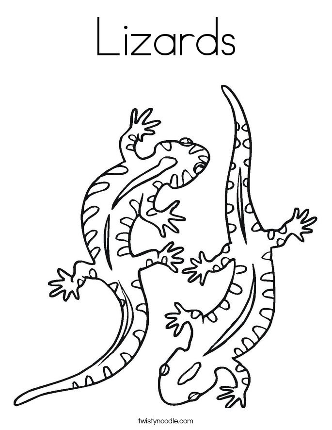 picture of a lizard to colour in great monitor lizard coloring pages download print of in a colour to picture lizard