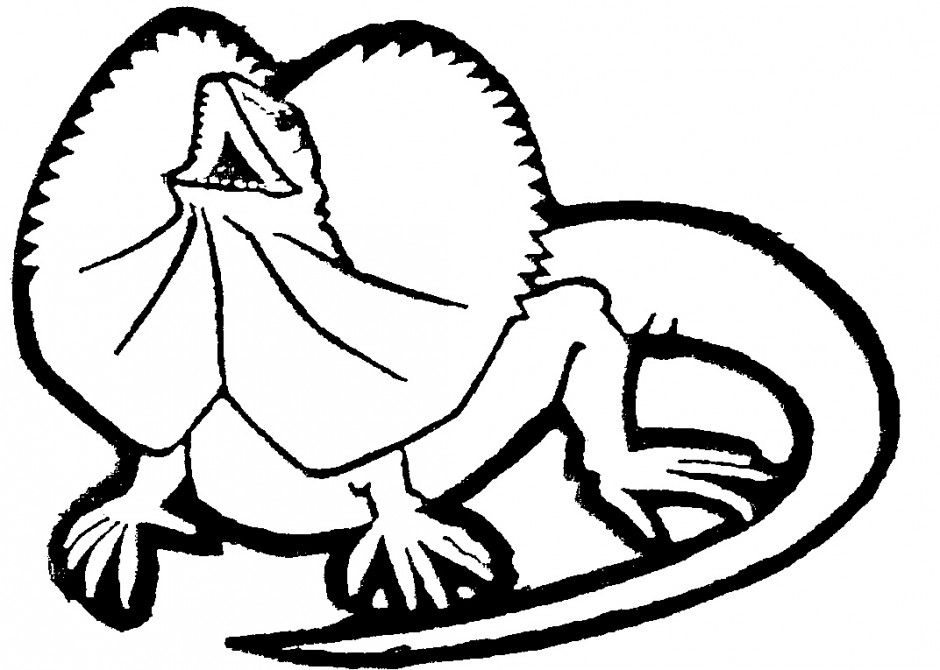 picture of a lizard to colour in printable lizard coloring pages for kids cool2bkids lizard of colour in picture a to