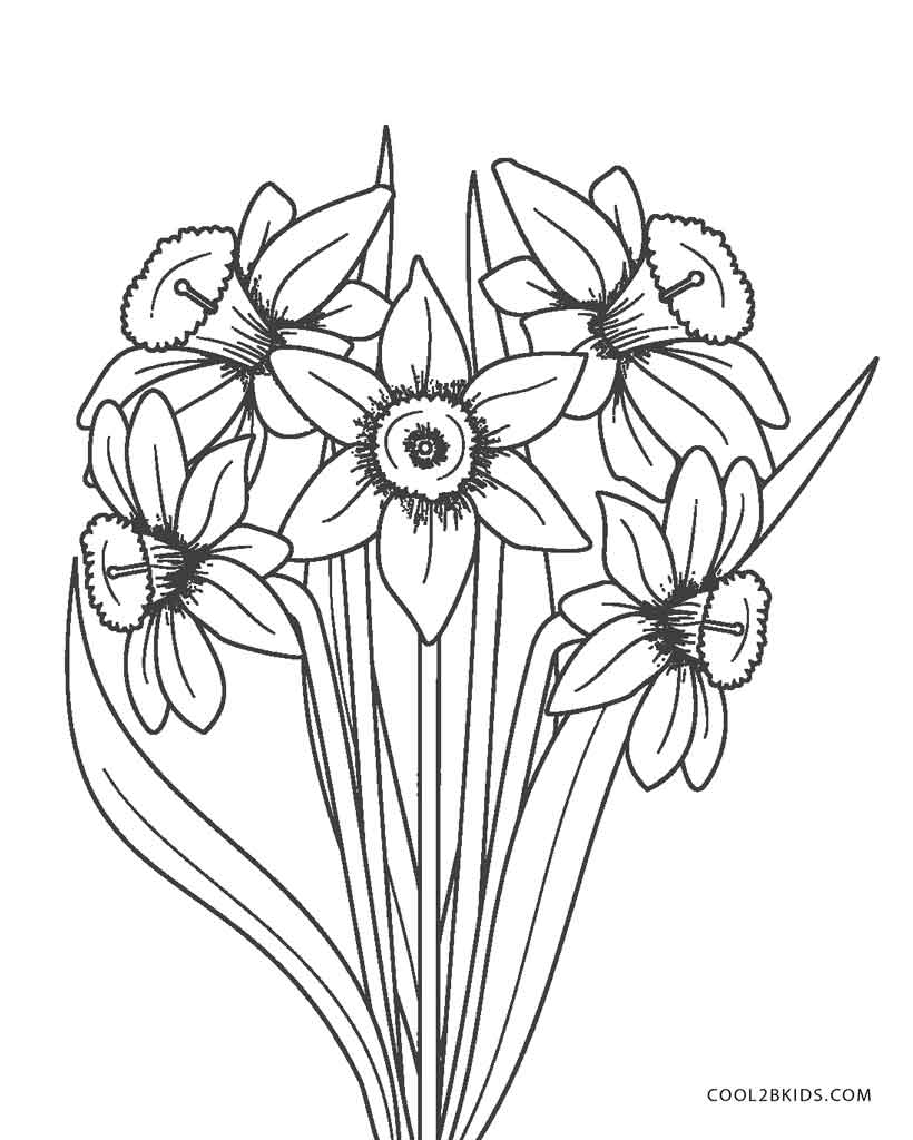 picture of flowers to print flower coloring pages printable coloring pictures of print picture flowers to of